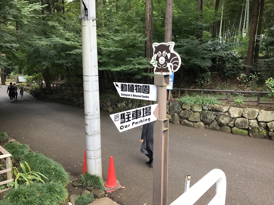ichikawa-zoo1-3