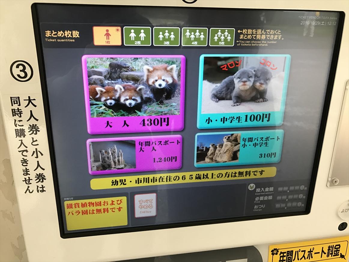 ichikawa-zoo1-5
