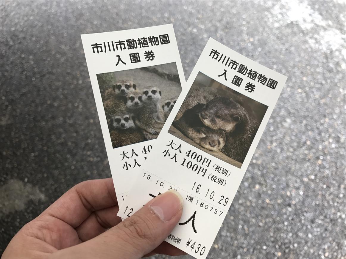 ichikawa-zoo1-6