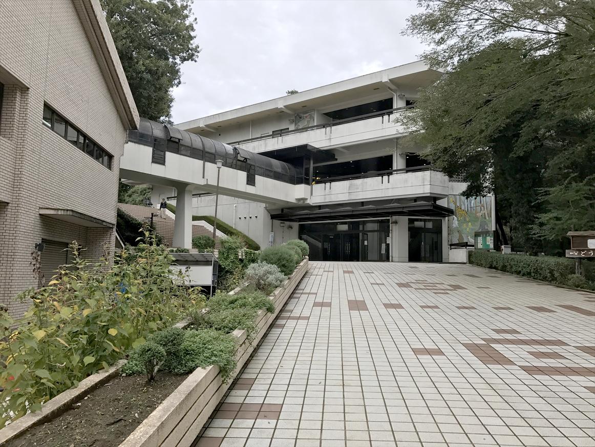 ichikawa-zoo1-7