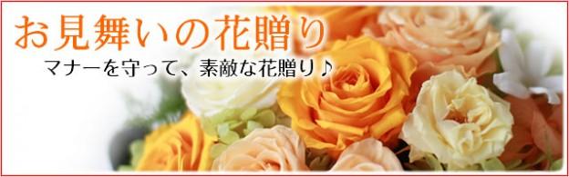 kouza_mimai_t